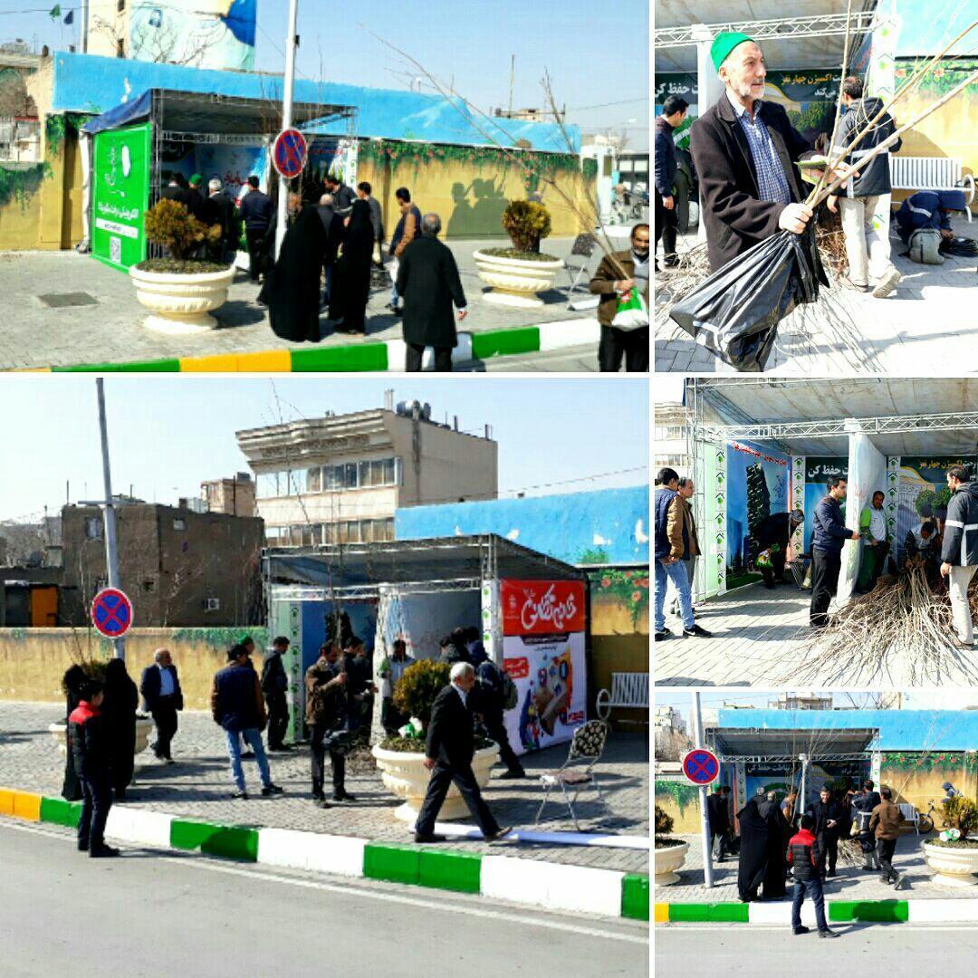 مشارکت همگانی برای احیای محیط زیست شهری در هفته درختکاری