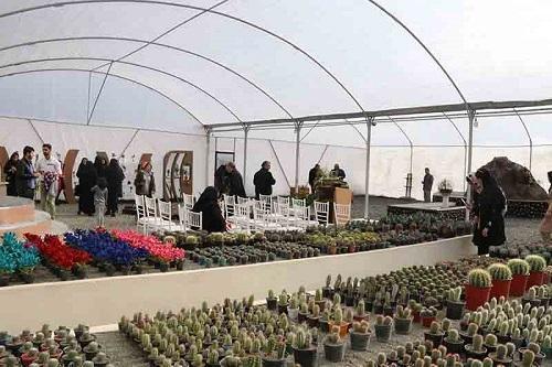 طراحی و احداث گلخانه گل های زینتی و گلدانی دانشگاه رازی به همت دانشجویان انجام شده است