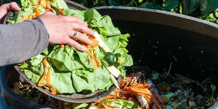 نتایج یک پژوهش: آمریکایی ها تقریباً نصف غذای خود را دور می ریزند