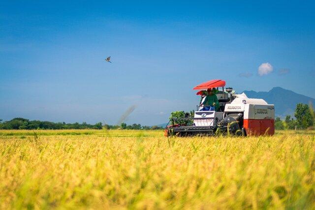 توسعه مکانیزاسیون کشاورزی به بنگاه توسعه ماشین های کشاورزی تبدیل شده است
